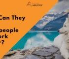 teach salespeople